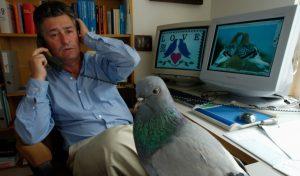 Daniel Haag Wackernagel в своем рабочем кабинете