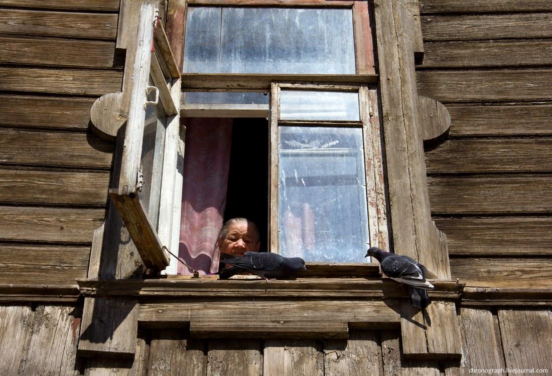 Пожилая женщина кормит голубей в окне