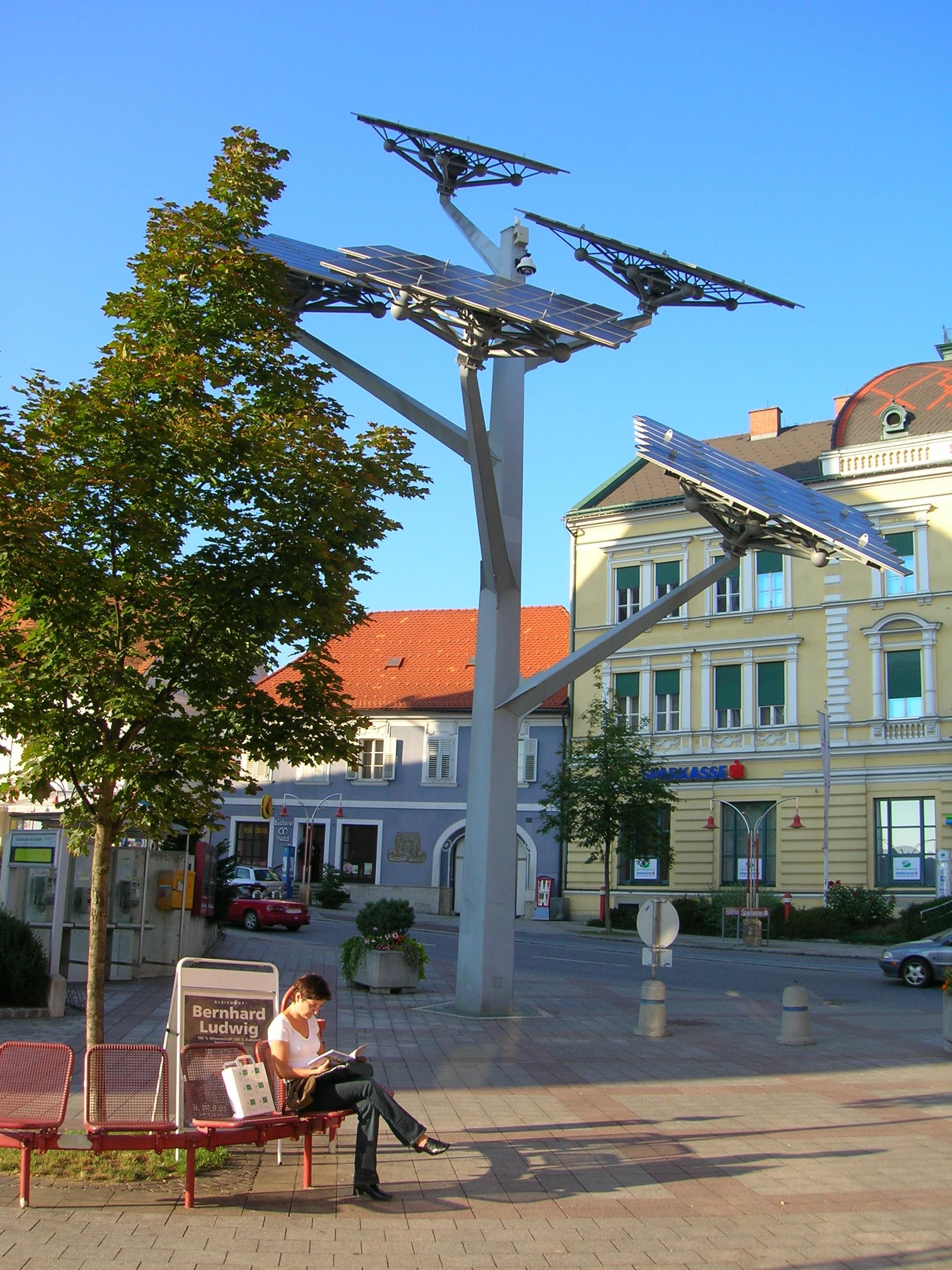 Солнечное дерево
