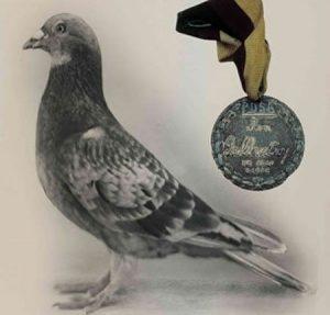 Г.И. Джо, Герой Второй Мировой Войны и его медаль