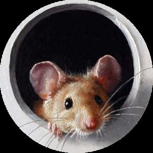 Мышь в трубе