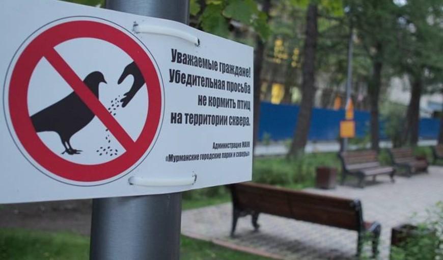 Кормить голубей - запрещается