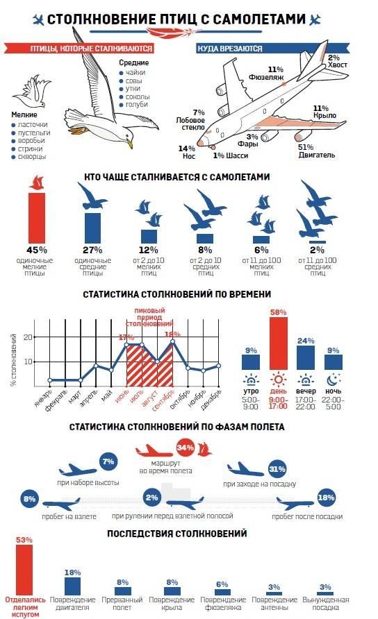 Инфографика по катастрофам самолетов, причиной которых были птицы